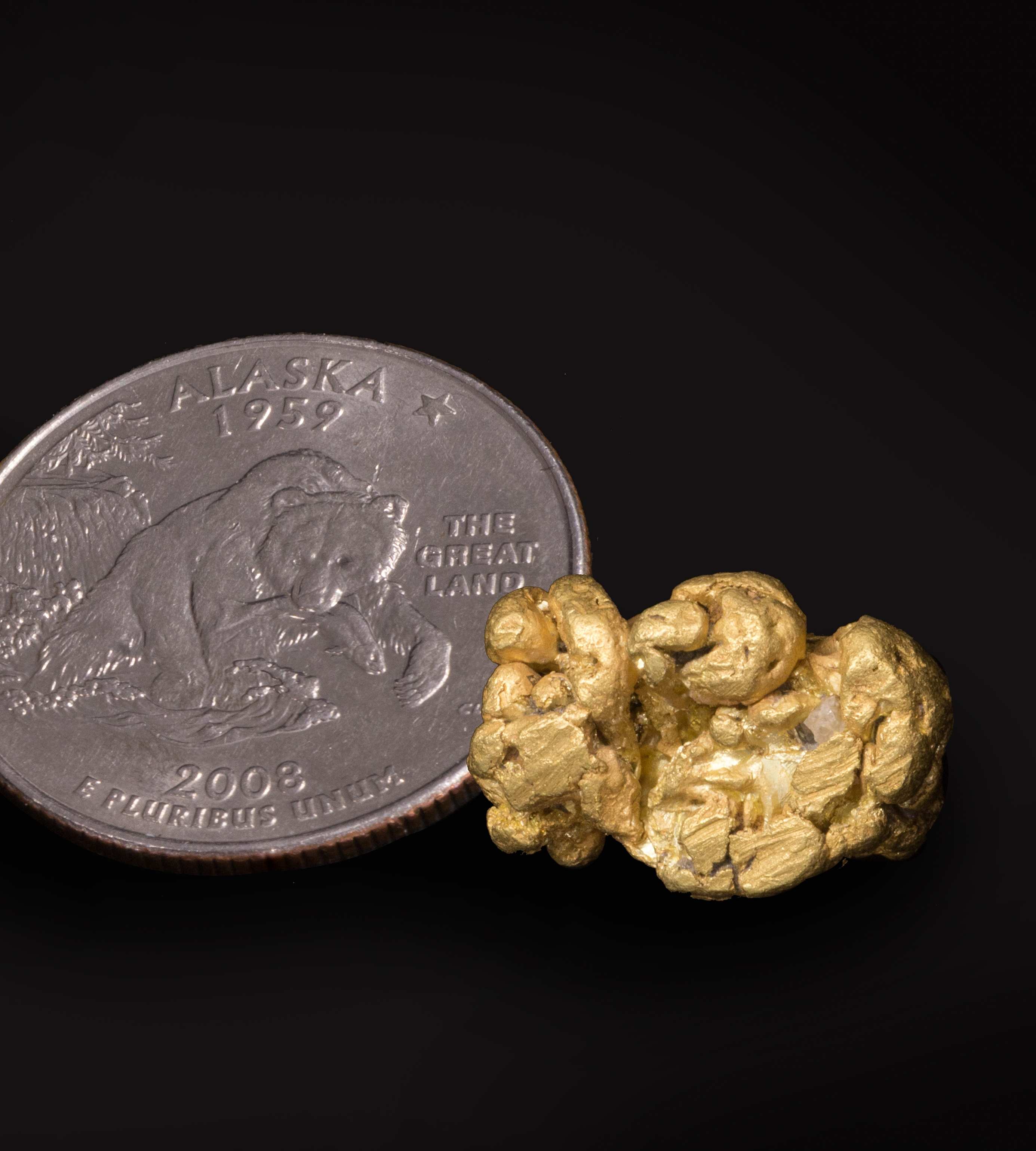 Alaskan Gold Nugget, Gold Nuggets for Sale, genuine gold nuggets, collect gold nuggets, gold nugget gifts, gold nugget collection, gold nugget investment, Gold Nuggets Alaska