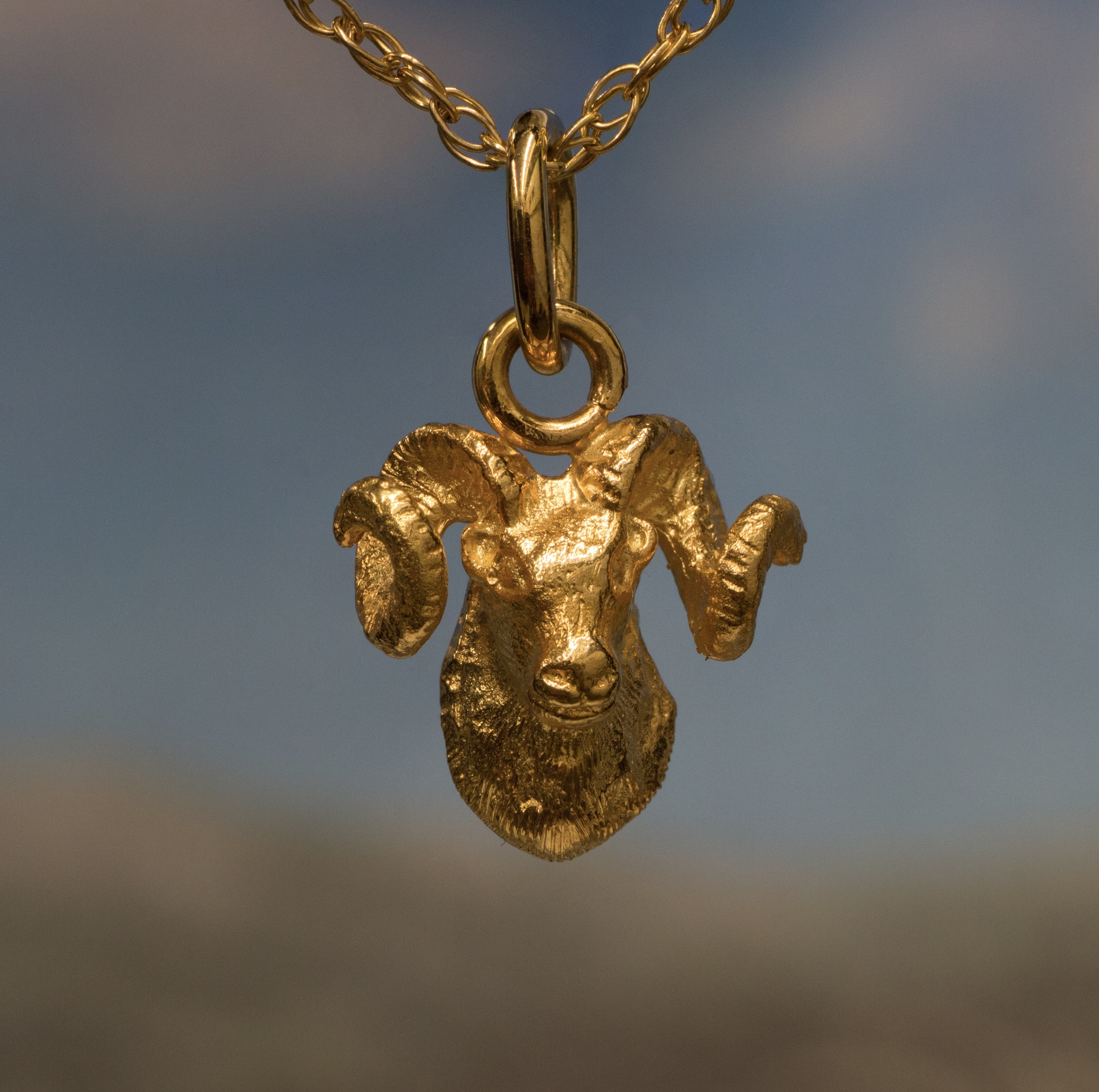 Alaskan Dall Sheep Crafted in 14kt Yellow Gold.