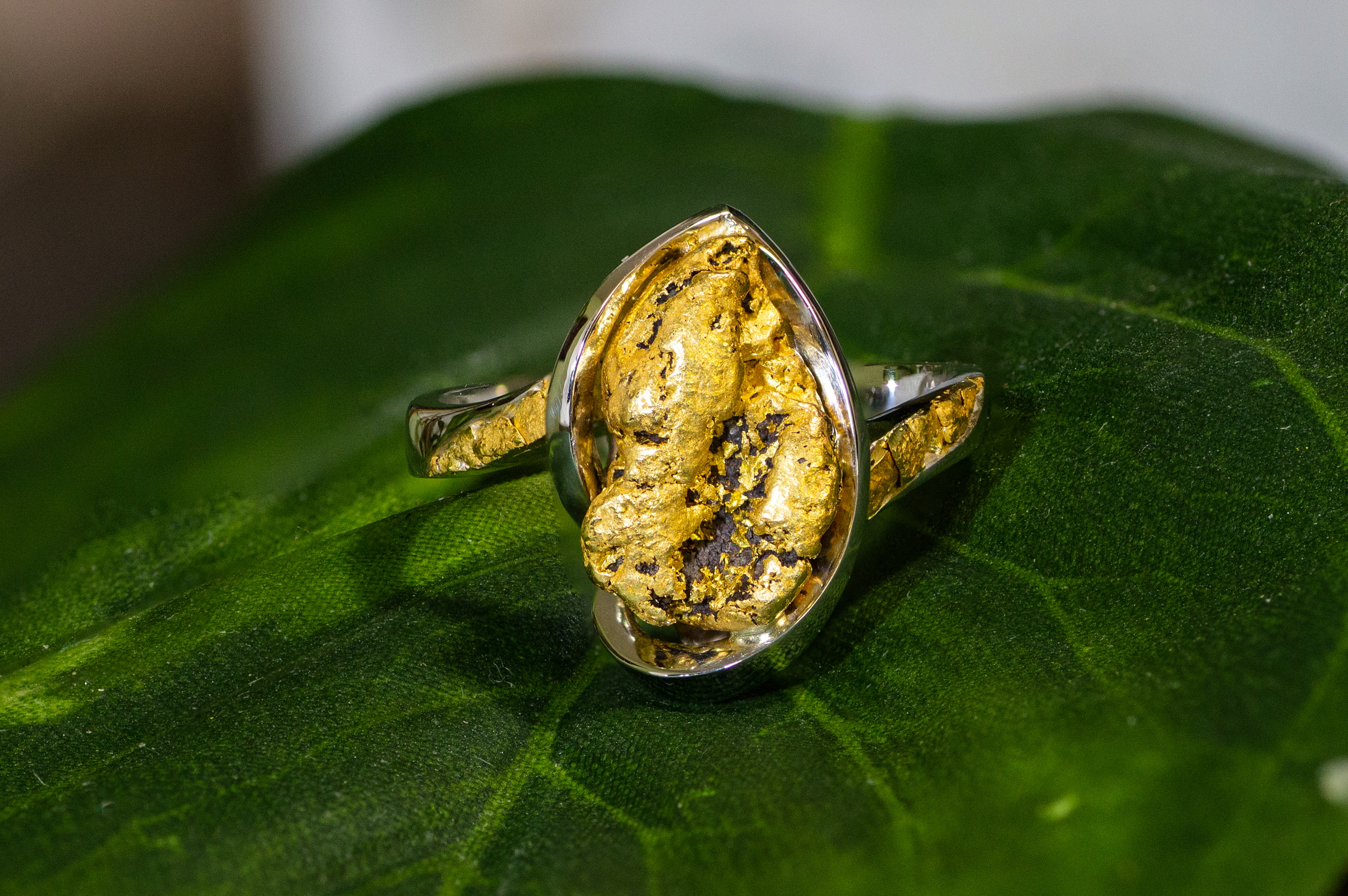 Alaskan Gold Nugget Ring accented with gold nugget flakes.