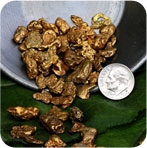 Alaskan Gold Nuggets